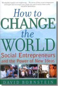 how to change the world by davin bornstein