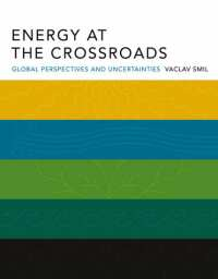 book the energy at the crossroads by vaclav smil